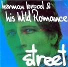herman-brood-pe-hawinkels-street